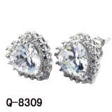 De Juwelen van de manier 925 Echte Zilveren Oorringen van het Zirconiumdioxyde