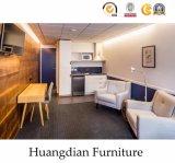 Einfache Art-warme Farben-Serien-Wohnungs-Möbel eingestellt (HD004)