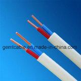 Kwaliteit & de Standaard bVVB-Parallelle Kabel van de Lijn
