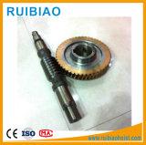 Gusano construcción mástil y rueda helicoidal, China Gusano personalizada fabricación de engranajes