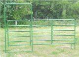 Europäisches populäres Puder-überzogenes rundes Pferden-Feder-Panel (XMM-HP3)
