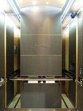 1000kg 씨 Passenger Elevator For14 Persons 상승