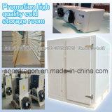 Sitio de conservación en cámara frigorífica de la alta calidad de la promoción