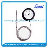 Termometro capillare o termometro industriale