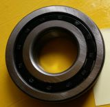 Zylinderförmiges Nup301 Rollenlager, China-Fabrik-/NTN/SKF-Rollenlager