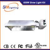 315W 두 배 산출은 가벼운 장비 에너지 절약 630W LED를 증가한다 식물 성장을%s 가벼운 장비를 증가한다 고품질을%s 가진 가벼운 장비를 증가한다