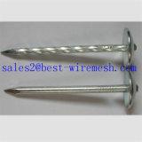 De Spijkers van het dakwerk met het Hoofd van de Paraplu/de Staal Verdraaide Spijker van het Dakwerk van de Steel