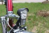 電気自転車250W Ebikeのリチウム電池のディスクブレーキEn15194都市電気バイク