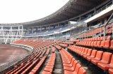 Silla plástica de la gimnasia del asiento del estadio para los deportiva de instalaciones