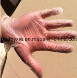 Голубо очистьте напудренные/перчатки свободно устранимые винила порошок