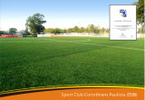 Kunstmatig Gras, Synthetisch Gras, Kunstmatig Gazon (y50-3)