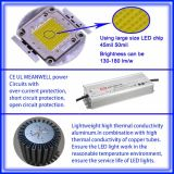 새로운 Patent High Brightness 100W LED High Bay Light