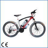 알루미늄 Alloy 350W Motor 36V/48V Mountain E Bike (OKM-650)