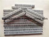 중국에서 좋은 가격 10j 시리즈 가구 물림쇠