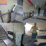 Elevatore elettrico della scala della piattaforma della pendenza per uso Disabled