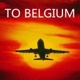 Service de fret aérien de Chine vers Bruxelles, Bru, Belgique