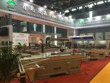 Machine van de Zaag van de Lijst van Qingdao de Professionele Glijdende