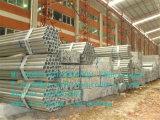 중국 공장에서 질 온실 프레임