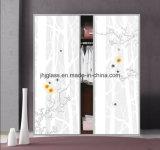 Jinhuajing 예술 유리, 장식적인 유리, 홈을%s 옷장 문 유리