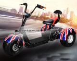 Motocicleta elétrica de 3 rodas com 1000W 60V/20ah