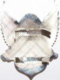 Глянцеватым таможня покрынная серебром конструировала значок