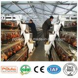 Gaiolas de bateria Advantaged para explorações agrícolas comerciais da camada da produção do ovo