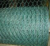 1/2inch, rete metallica rivestita del pollo del PVC 5/8inch/rete metallica esagonale