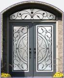 Популярные входные двери отделки бронзы утюга конструкции