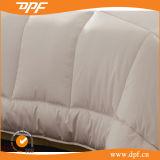 Вышивки Silk Duvet Quilt гусыни одеяло вниз (DPFMIC26)