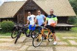 48V 240Wの脂肪質の電気自転車22inch E Fatbike