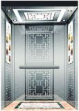 Elevador/elevador Home residenciais alemães com movimentação de Vvvf (RLS-245)