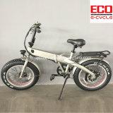 リチウム電池の電気Foldable自転車が付いている折るバイク