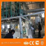 Fräsmaschine des Handelsmais-100t/24h installiert in Kenia