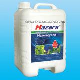 Fertilizzante di verde dell'estratto dell'alga con la materia organica