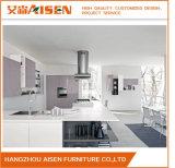 Eleganter Farben-moderner Entwurfs-einzelner Gebrauch-Lack-Küche-Schrank