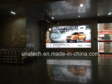 Rectángulo ligero publicitario montado en la pared de interior de la visualización LED del aeropuerto
