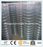 Het hete Ondergedompelde Gegalvaniseerde Hete Verkoop Gelaste Netwerk van de Draad (Fabriek)