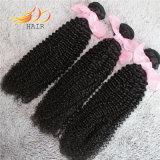 Волосы Remy Kinky человеческих волос девственницы скручиваемости монгольских дешевые