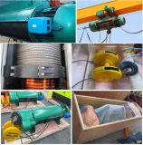 Elektrischer einzelner Träger-im Freien Hebezeug-Portalkran