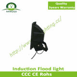 120W 130W 140W Induction Outdoor Light mit CER, GS, Induction Flood Light