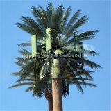 강철 Monopine에 의하여 위장되는 인공적인 나무 통신 탑