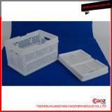 高品質のプラスチック注入の折る容器または木枠の鋳造物