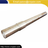 Eixo personalizado do eixo do aço inoxidável do CNC do OEM da elevada precisão