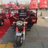 Motor Trike do triciclo do certificado do GV /CCC da carga do Manufactory grande