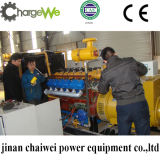 20kw-600kw het Bed Genset 50Hz/60Hz van de Kolenmijn van de Generator van het Steenkolengas