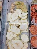 Secador de gelo do vácuo para a fruta e verdura