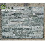 De in het groot Groene Marmeren Steen Van uitstekende kwaliteit van de Cultuur voor de Decoratie van de Muur
