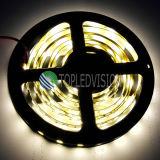 Preço novo da tira SMD5054 60LEDs/M do diodo emissor de luz bom na iluminação da decoração