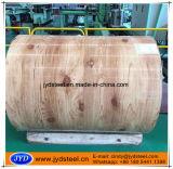 Bobinas prepintadas modelo de madera del acero