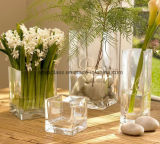 Florero de cristal de la decoración transparente cuadrada